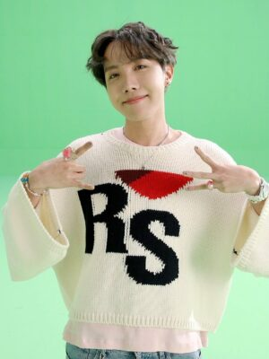 Tight Knit Street Style Cropped Sweater | J-Hope – BTS
