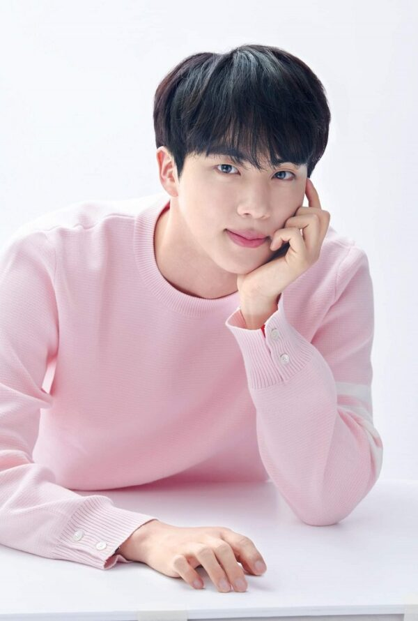 Pastel Pink Knitted Sweater | Jin – BTS