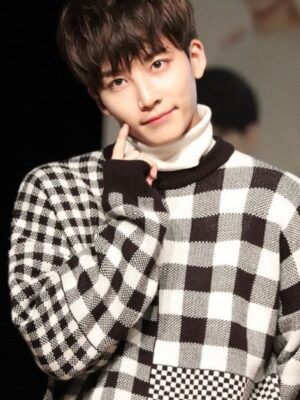 Black And White Checkered Sweater | Jeonghan – Seventeen